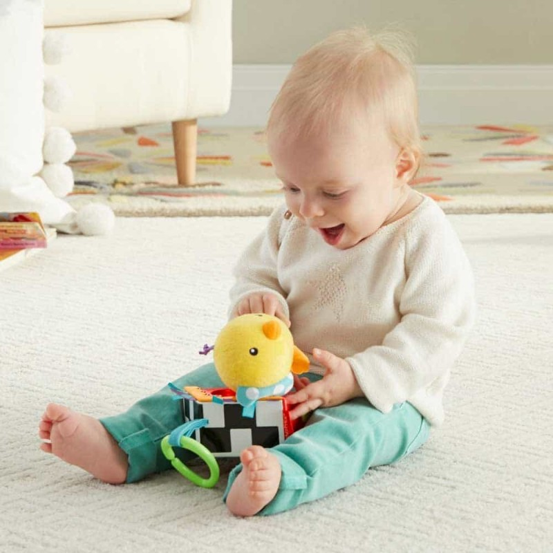 Jucărie pluș Mattel Fisher-Price DFP95 pasăre multicolor
